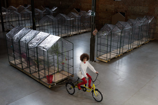 Woman dressed as a crazy scientist rides a tricycle and pulls a mobile greenhouse behind her.